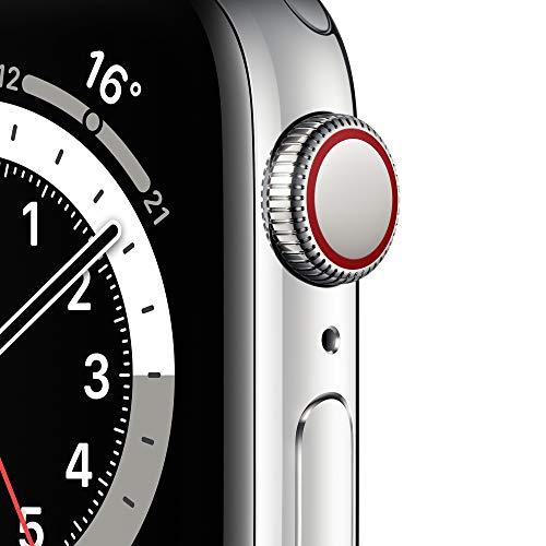 AppleWatch Series6 (GPS+ Cellular, 40mm) Edelstahlgehäuse Silber, Milanaise Armband Silber