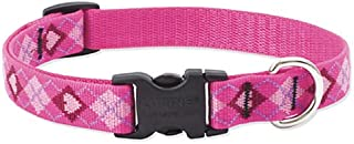 Lupine 3/4 Inch Puppy Love Adjustable Dog Collar for Small to Large Dogs
