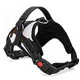 PACKNBUY Dog Harness No Pull Reflective Comfort Adjustable Vest (Large)