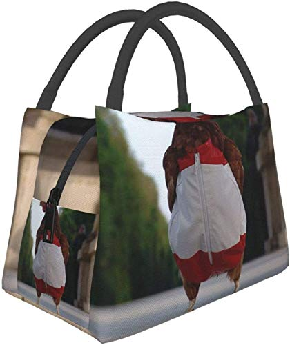 Paquete de cremallera multifuncional para oficina de trabajo escolar, patas de pollo para disfraz, bolsa de almuerzo de calle, lonchera, bolsa de comida, bolsa de aislamiento porttil