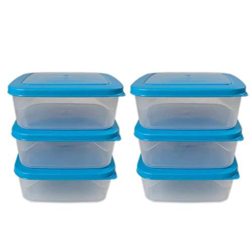 ml24 6 recipientes para congelar, 1,0 L, transparente/azul, 16,5 x 16,5 x 6 cm, cuadrados.
