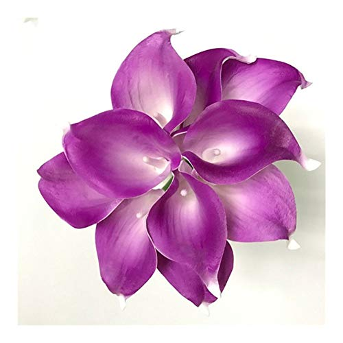 JiaQinHe Restos Festival Flor for el Partido casero 21pcs / Lot Natural Ramo de la Flor de Cala Decoración Boda del Lirio Tacto Verdadero Falso decoración 19 Colores Nunca (Color : F)