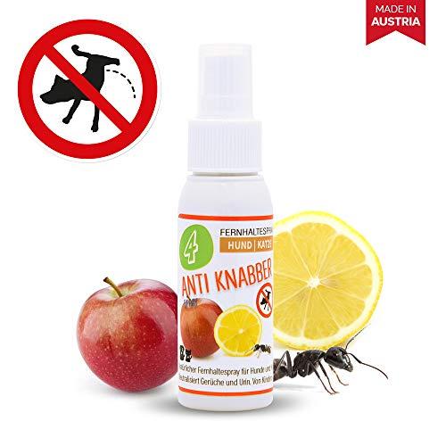 4yourpet Anti Knabber und Erziehungsspray für Hunde und Katzen, Welpentraining, für Innen und Außen, neutralisiert Urin Geruch, Anti Markierungsspray, Enzymreiniger oder Geruchsentferner 50ml