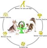 Zoom IMG-1 jr meet giochi gatto distributore