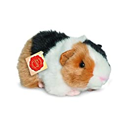 Guinea Pig Gifts 3