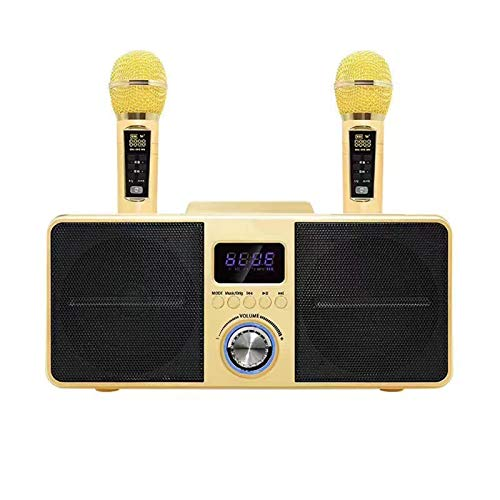QIAO Bluetooth Speaker Built-in Portable Speaker with Two Handhelds Professional Microphone Set for Party, KTV, PC,Gold