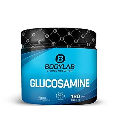 Bodylab24 Glucosamin 120 Tabletten / 2000mg Glucosamine pro Tagesdosis / für starke Gelenke bei intensivem Training / einfach zu schlucken und zu dosieren