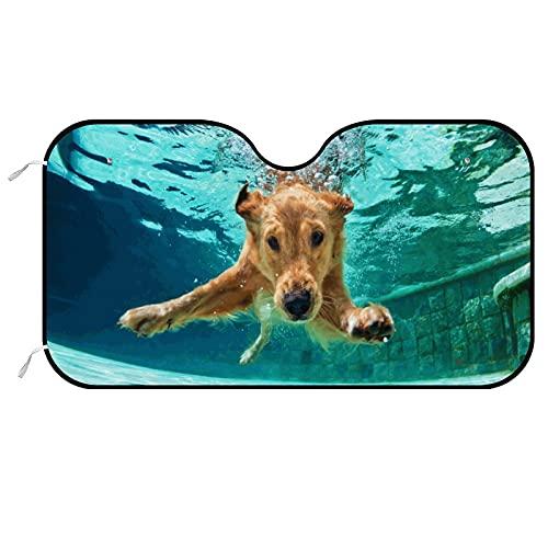 Parasol para parabrisas de coche, Golden Labrador Retriever Puppy Diviértete en la piscina Modelos de uso general, puede proteger el daño causado por los rayos ultravioletas 130 x 70 cm