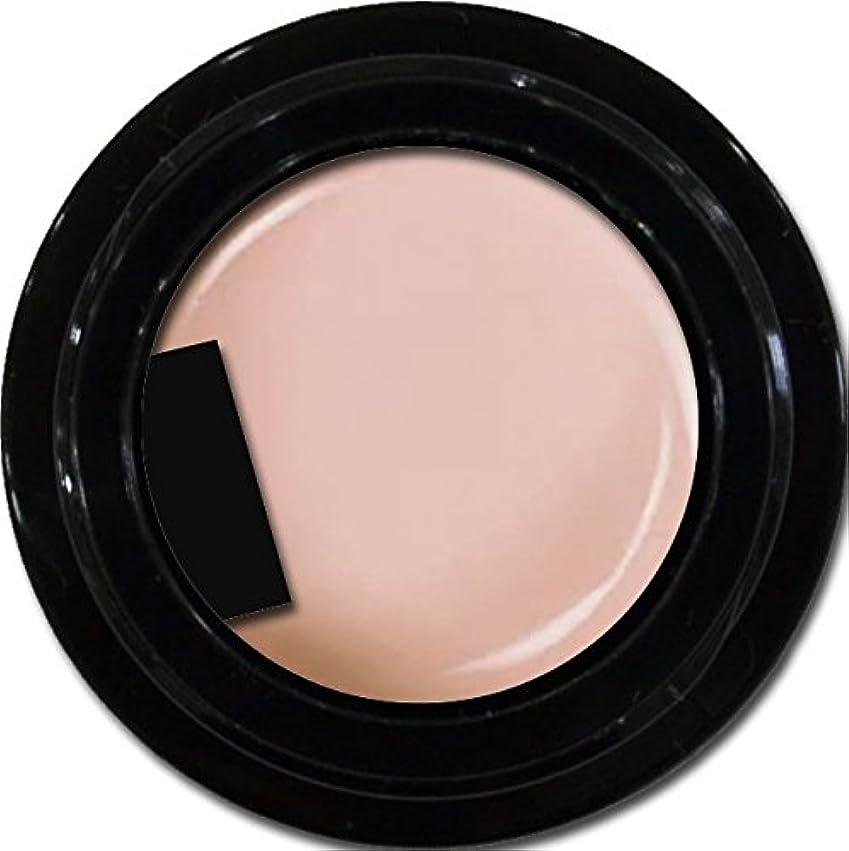 損失壊す消毒するカラージェル enchant color gel M204 MilkyPink 3g/ マットカラージェル M204 ミルキーピンク 3グラム