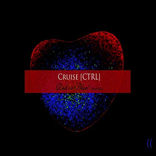 cruise [ctrl]