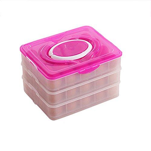 LIZHIQIANG Knödel-Box-Ei-Kasten-Kühlschrank-frische Aufbewahrungsbox-gefrorener Knödel Wonton-Kasten-Dose Mikrowelle-Knödel-Unterschale Plastikvollenden-Kasten ( Farbe : Rot )