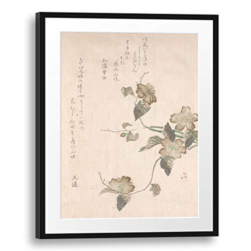 Printed Paintings Passepartout (60x80cm): Artista no identificado - Flores de Yamabuki (kerica Japonica)