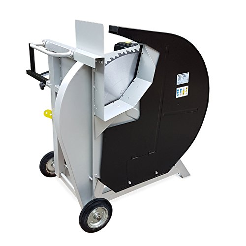 EBERTH 13 PS Benzin Wippsäge (230 mm Holzdurchmesser, Ø 700 mm Hartmetallsägeblatt, luftgekühler 4-Takt Benzinmotor, Bremsschalter, stabiles Untergestell inkl. Fahrgestell)