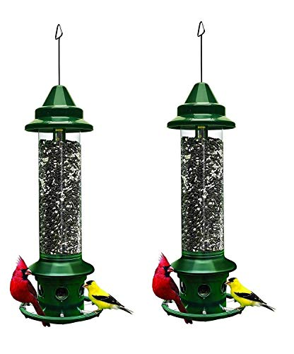 Best bird feeders for winter:Squirrel Buster Plus Squirrel proof Bird Feeder