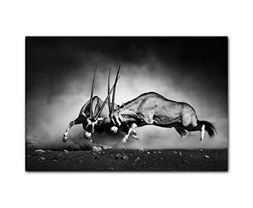 PB Art - Wandbild schwarz Weiss 80x120cm als Kunstdruck auf Leinwand und Holzkeilrahmen - Beste Qualität, handgefertigt in Deutschland!