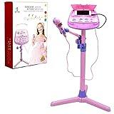 WISHTIME- Micrófono Musicales, Soporte Ajustable para Karaoke con función de música Externa y Luces Intermitentes, Juguete niñas (Hanji ZM16038VINE)