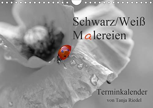Schwarz-Weiß Malereien Terminkalender von Tanja Riedel für die SchweizCH-Version (Wandkalender 2021 DIN A4 quer)