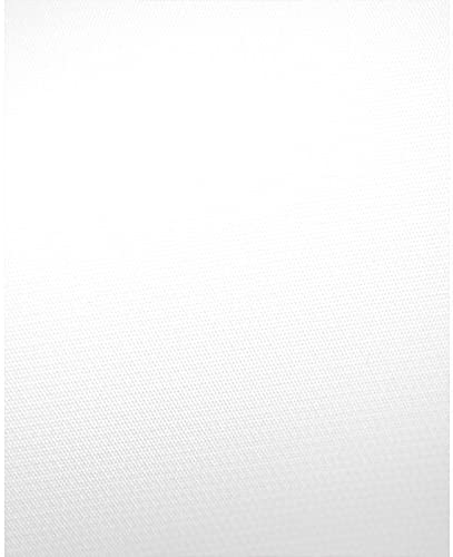 White Vinyl Photography Ranking TOP15 Backdrop - 8ft h Profession w NEW before selling ☆ 16ft x