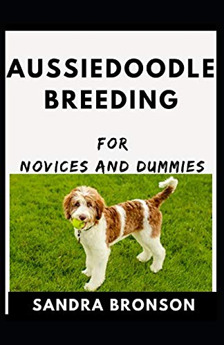 Aussiedoodle Breeding For Novices And Dummies