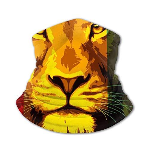 Reggae Rasta Flagge Löwenmasken Kind Kinder Teenager Maske Dunst Staub Gesicht...