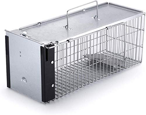 """Faicuk Heavy Duty Squirrel Trap Chipmunk Trap Rat Trap and Other Similar-Size Rodents - 16.3"""" x 6"""" x 6.7"""""""