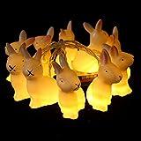 Herefun Luce di Pasqua, 1.65M 10 LED Uovo Di Pasqua Stringa di luce Catena di luci a LED per Decorazioni di Paesaggio Casa Giardino