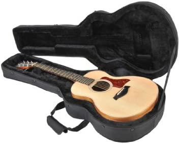 Top 10 Best skb acoustic guitar case