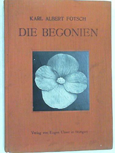 Die Begonien, ihre Beschreibung, Kultur, Züchtung und Geschichte.