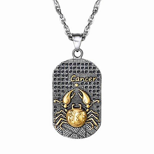DDDDMMMY Collar,Colgante Collar De Acero Inoxidable De Cáncer Constelación Regalo Collar De Saint Marc Cameo Signo Zodiaco para Hombres