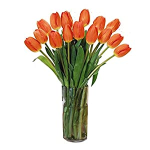 Stargazer Barn, Stems of Fresh Orange Tulips Farm picked Tulips with Vase California Grown, 15 Count from Stargazer Barnst1fa -- Dropship