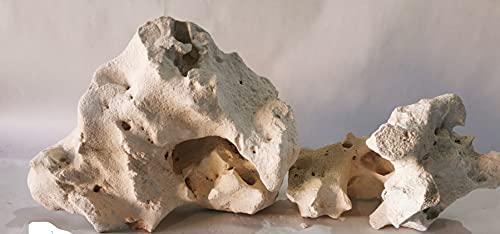 Retne Natur Kalkstein Premium Aquarium Weiss Ocean Rock für Malawi,Tanganijka 2Stk