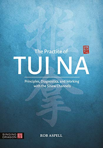 The Practice of Tui Na: Principles, Diagnostics and Working with the Sinew Channels (English Edition)