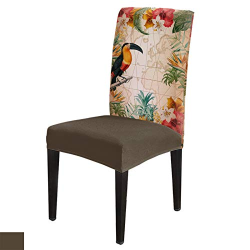 Dining Chair Covers, Stretch Protectors Slipcovers Tropical Leaves Flower and Toucan Removable Washable Seat Cover for Home Living/Dining Room Party Hotel Vintage Backdrop