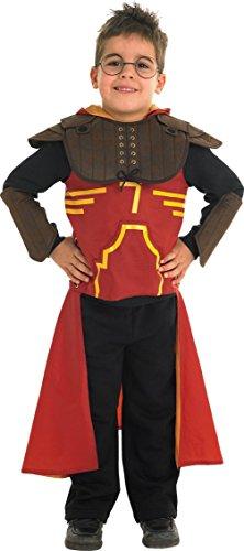 Rubie's 883575L Harry Potter Deluxe Quidditch Robe de déguisement, Taille L