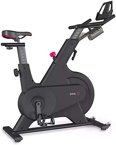 Wghz Bicicleta giratoria con Control magnético para el hogar, Bicicleta de Ejercicio para Interiore