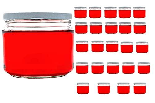 Casavetro Trasparente Tappo A vite bottiglie di vetro vuote 67, 105, 210, 300 ml - riutilizzabile Twist Off coperchi - a tenuta D'aria Coperchio In Metallo Per birra a casa Vodka e acqua (24 x 300 ml)