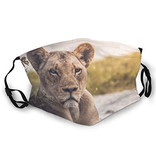 Cinlanck Fashion Maskers met dubbelzijdige patronen, wasbare en herbruikbare gezichtsmaskers, geschikt voor iedereen, leeuw