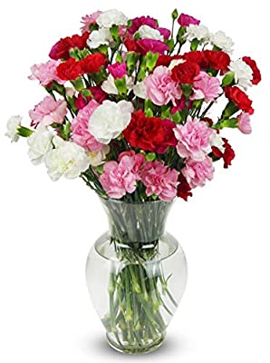 Benchmark Bouquets 20 stem Rainbow Mini Carnations, With Vase (Fresh Cut Flowers) by Benchmark Bouquets