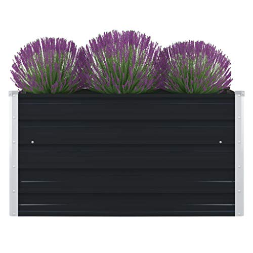mewmewcat Raised bed herb bed for vegetables, herbs for garden terrace balcony 100 x 100 x 45 cm galvanized steel anthracite
