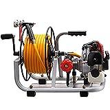 Motor y bomba de sulfatar 2 tiempos 30bar 10 litros...