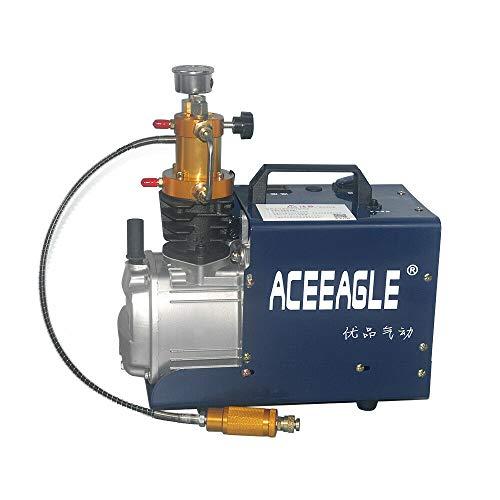Compresores de aire de alta presión eléctrica PCP con separador de aceite y agua, 1,8 kW, 300 bar, 4500 psi, 2800 r/min para la botella de inflado