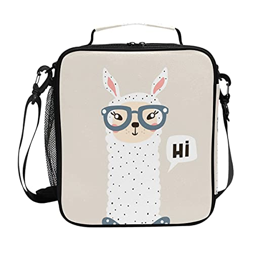 Bolsa para el almuerzo con diseño de cristal de alpaca con aislamiento para el almuerzo, portátil, con correa para el hombro, para niños, niñas, mujeres y hombres