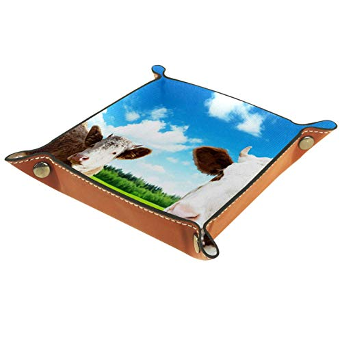 Caja de almacenamiento pequeña, bandeja de valet para hombre,Prado de vaca de primavera,Organizador de cuero para llaves de caja de monedas