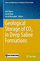 Geological Storage of CO2 in Deep Saline Formations (Theory and Applications of Transport in Porous Media, 29)