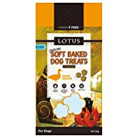 LOTUS(ロータス) ドッグトリーツ グレインフリーダックレシピ 犬用 80g