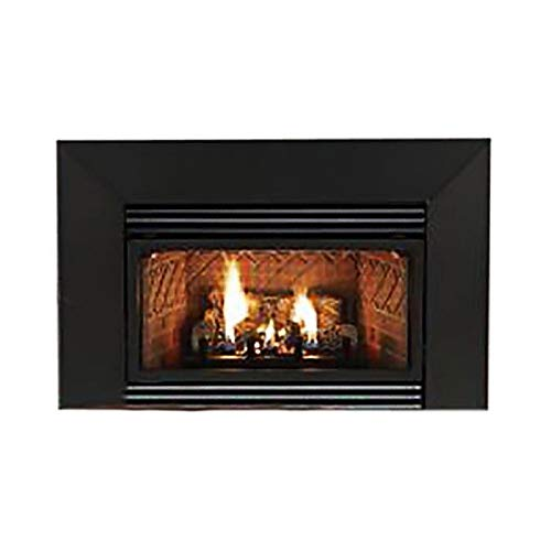 Amazing Deal Empire VFPC20IN73N Insbrook VF IP 20000 BTU Fireplace Insert - NG