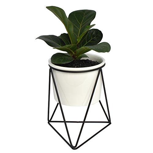 Decorative geométrico metal de hierro soporte de flor blanca con pequeñas...