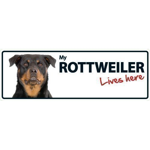 Magnet & Steel Aimant et Acier Rottweiler Lives Here Paysage Animal Sign