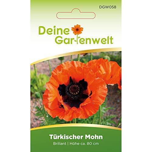 Türkischer Mohn | Orientalischer Mohn | Mohnsamen | Samen für Feuer-Mohn | Feuermohn Saatgut | Morgenländischer Mohn