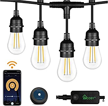 98-Feet Smart Dimmable Outdoor LED String Lights (Warm White)
